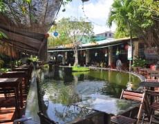 Phong Cách Nội Thất Quán Cafe Sân Vườn
